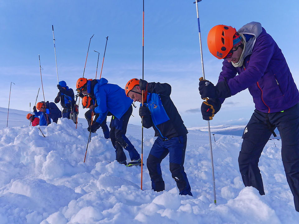 Winter training in Cairngorms, probing for buried casualty